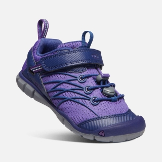 KEEN Chandler CNX royal purple vel.30